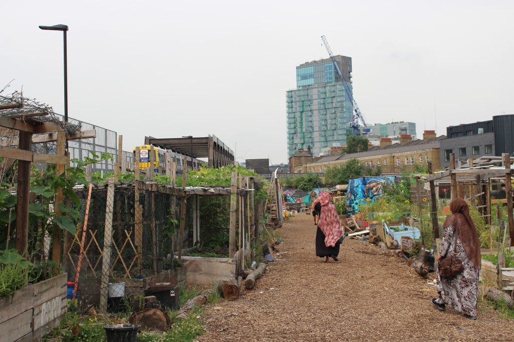 the image shows two women in headscarves walking through an urban community garden